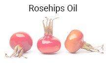 rosehips-oil